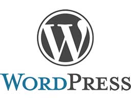 Wordpress megoldások